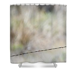 Starling Attack Shower Curtain by Mike Dawson