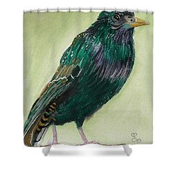Starling Shower Curtain by Carole Robins