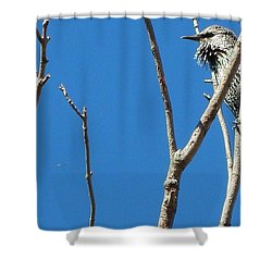 Starling Darling Shower Curtain