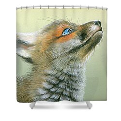 Shower Curtain featuring the painting Starry Eyes by Mike Brown