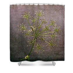 Shower Curtain featuring the photograph Starry Flower by Randi Grace Nilsberg