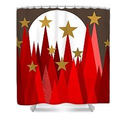 Starry Winter Night Shower Curtain