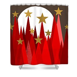 Starry Winter Night Shower Curtain