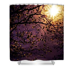Stars In An Earthly Sky Shower Curtain by Vivienne Gucwa