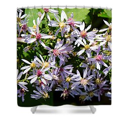 Stars Of The Autumn Shower Curtain