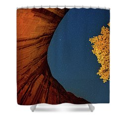 Stars Over Canyon Shower Curtain