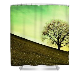 Starting Springtime Shower Curtain by Hannes Cmarits