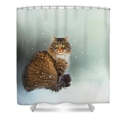 Starting To Snow Again Shower Curtain by Theresa Tahara