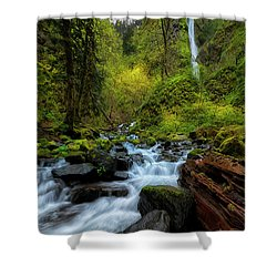 Shower Curtain featuring the photograph Starvation Creek And Falls by Ryan Manuel