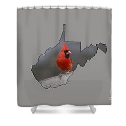 State Bird Of West Virginia Shower Curtain