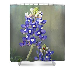 Shower Curtain featuring the photograph State Flower Of Texas by David and Carol Kelly