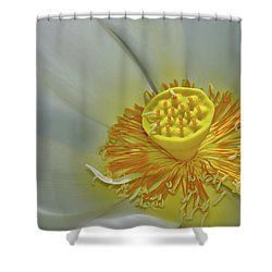 State Of Grace Shower Curtain