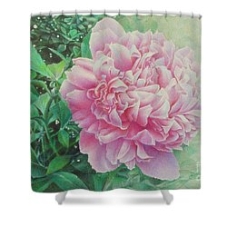 State Treasure Shower Curtain by Pamela Clements