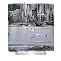 Statio 12 Shower Curtain
