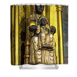 Statue Of The Virgin Mary Shower Curtain