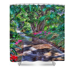 Shower Curtain featuring the photograph Stay On Your Path by TC Morgan