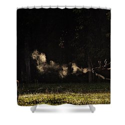 Steamy Breath Elk Bugle Shower Curtain