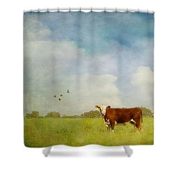Shower Curtain featuring the photograph Steamy Hot Summer Days by Jan Amiss Photography