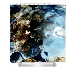 Steelpan 1 Shower Curtain