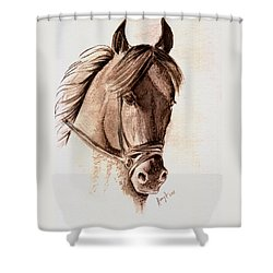 Steely Black Stallion Shower Curtain by Remy Francis