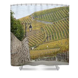 Steep Path In The Lavaux Vineyards Shower Curtain by Colleen Williams