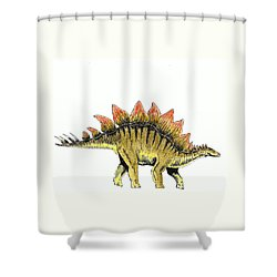 Stegosaurus Shower Curtain