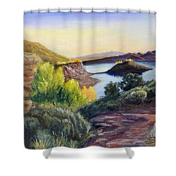 Steinaker Shower Curtain by Sherril Porter