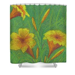 Stella D'oro #2 Shower Curtain