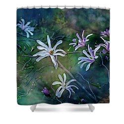 Stellata Series 2/2 Shower Curtain