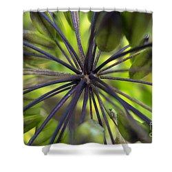 Stems Shower Curtain