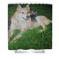 Step Dad For The Bandits Shower Curtain