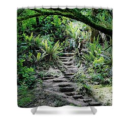 Step On Up Shower Curtain