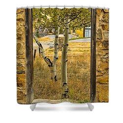 Step Through Shower Curtain