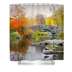 Stepping Stones Shower Curtain by Diana Angstadt