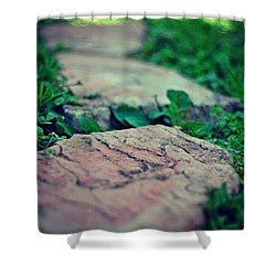 Shower Curtain featuring the photograph Stepping Stones by Artists With Autism Inc
