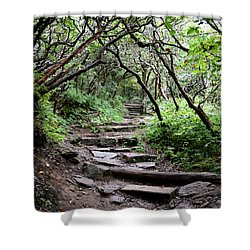 Steps Into The Enchanted Forest Shower Curtain