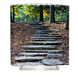 Steps Of Fall Shower Curtain