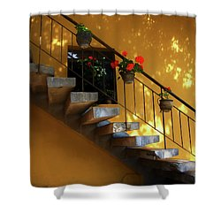 Steps To Tranquility  Shower Curtain