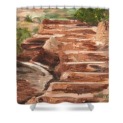 Steps To Zion Shower Curtain