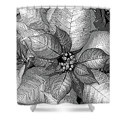 Sterling Shimmer Shower Curtain by DigiArt Diaries by Vicky B Fuller
