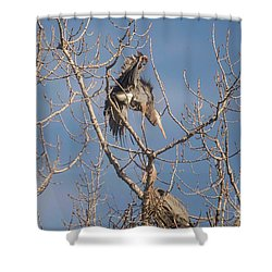 Shower Curtain featuring the photograph Stick Acceptance by David Bearden