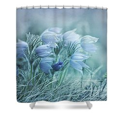 Stick Together Shower Curtain by Priska Wettstein