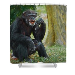 Shower Curtain featuring the painting Sticks And Stones by Judy Kay