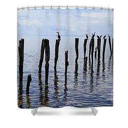 Shower Curtain featuring the photograph Sticks Out To Sea by Stephen Mitchell