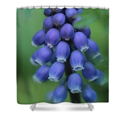 Still Blooming  Shower Curtain
