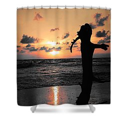 Still By Sea Shower Curtain