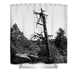 Still I Rise Shower Curtain