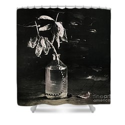 Still Life #141456 Shower Curtain