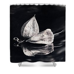 Still Life #14167 Shower Curtain