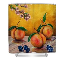Shower Curtain featuring the painting Still Life #5 Peaches And Blueberries by Thomas Lupari